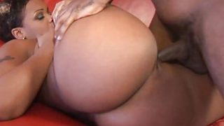 Sassy amateur gets her pussy nailed